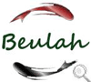 Stockist of the Beulah GB World Class Fly Rods